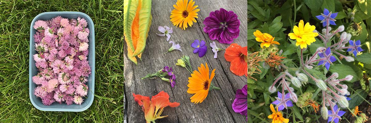 drieluik-eebare-bloemen