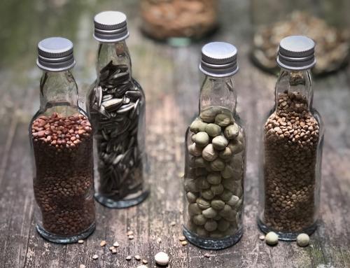 Nieuw: de grote OERMOES zadenruil!